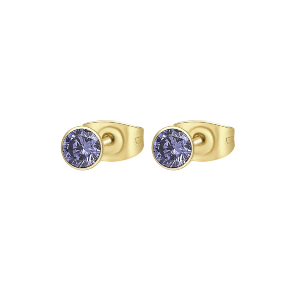 316L stainless steel earrings and gold finishes with tanzanite cubic zirconia.