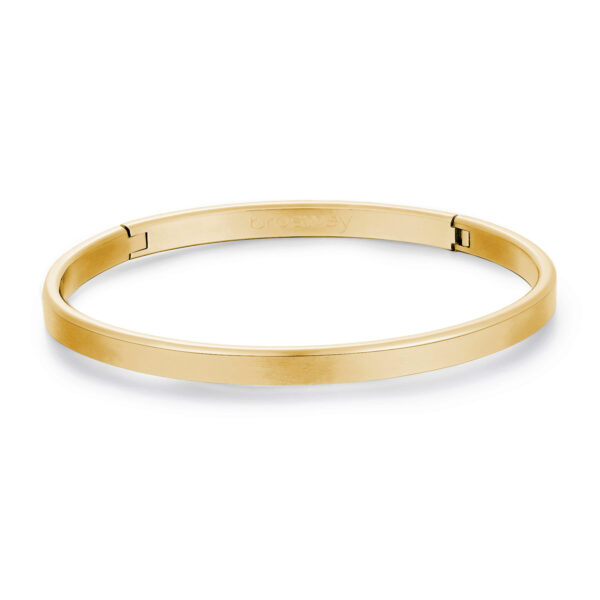 316L stainless steel bangle bracelet and gold finishes.