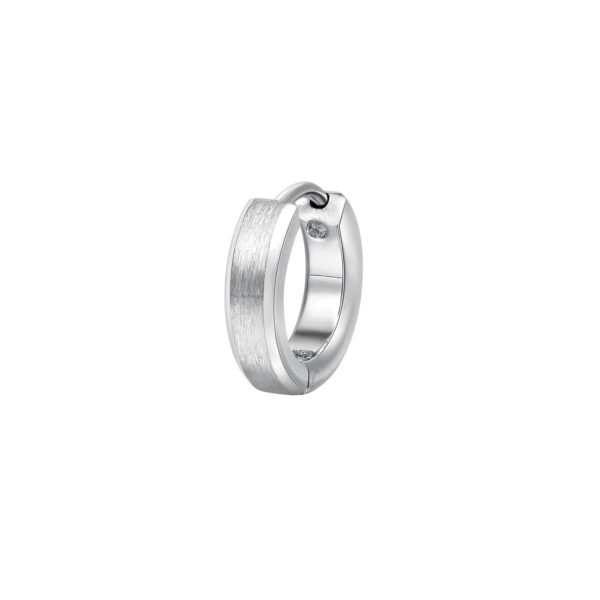 316L stainless steel earring.