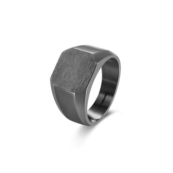 316L stainless steel signet ring and gun finishes.