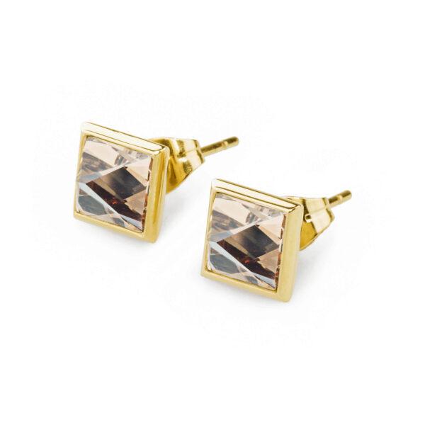 Earrings POLAR