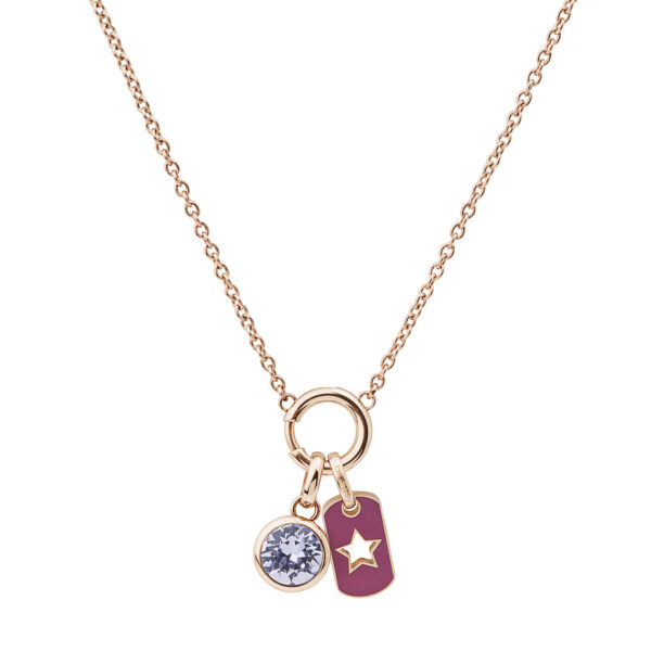 316L stainless steel composable necklace and rose gold pvd with enamel and Swarovski® crystal.
