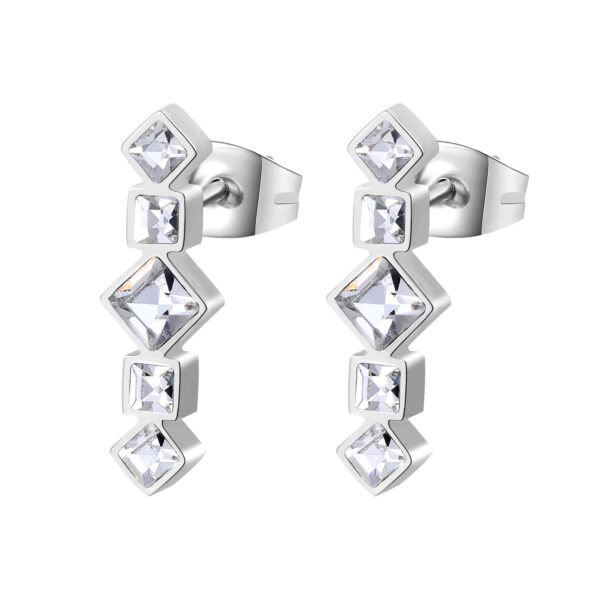 316L stainless steel earrings with crystal crystals.