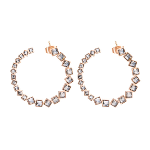316L stainless steel earrings and rose gold pvd with velvet crystals.