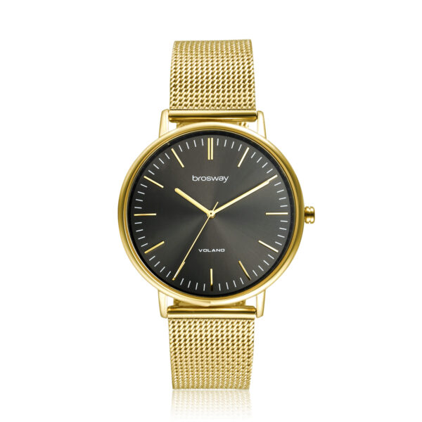 Features: hours, minutes, seconds Movement: japanese quartz movement Case: Ø 42 mm 304 stainless steel, gold pvd, mineral glass and screw-down crown Dial: grey sunray Water resistant: 3 atmospheres Wristband: 304 stainless steel and gold pvd
